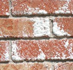 Efflorescence Causes (the dreaded white powder)